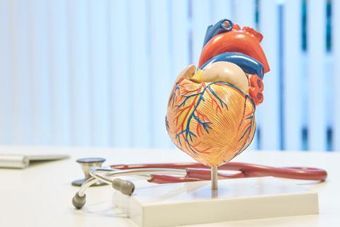 Kardiologie (privatärztlich)